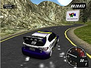 Rally Motion Game